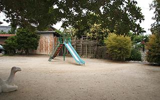 公园的样子