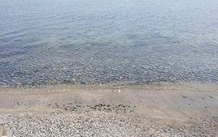 물이 깨끗하다