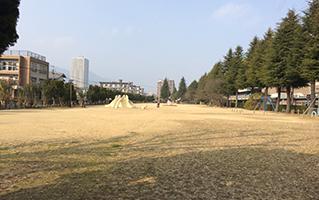 大的草坪广场