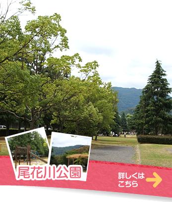 尾花川公園